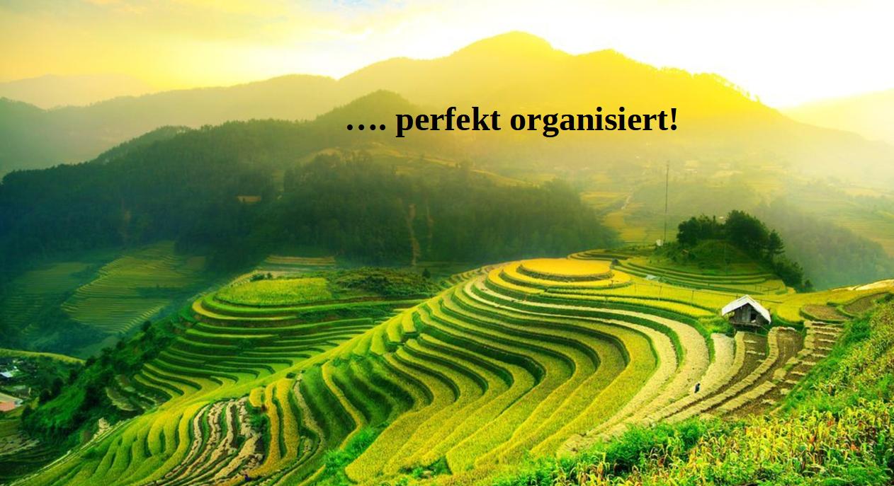 …perfekt organisiert!